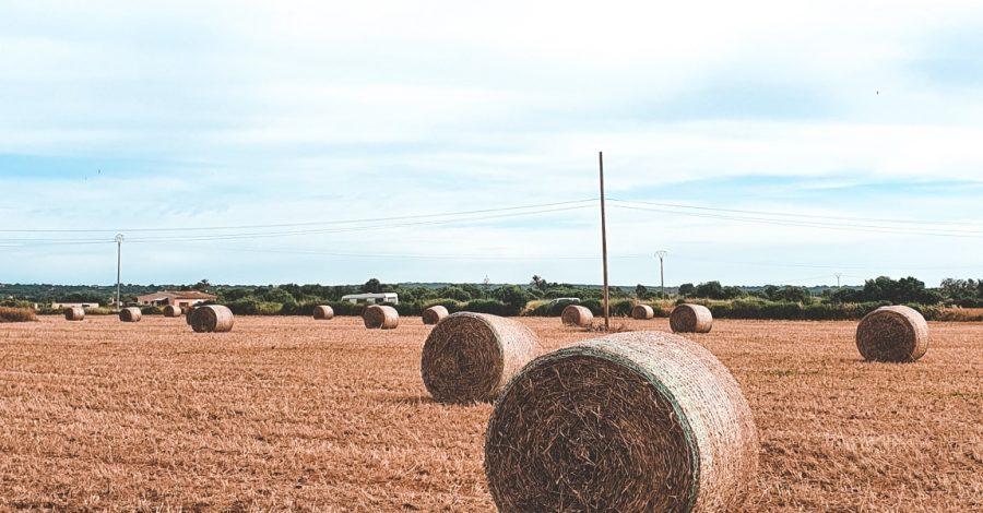 Spaanse platteland