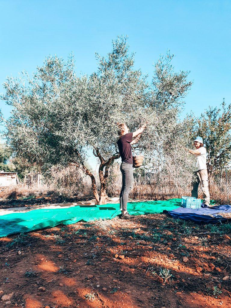 Duurzaam huisje Mallorca